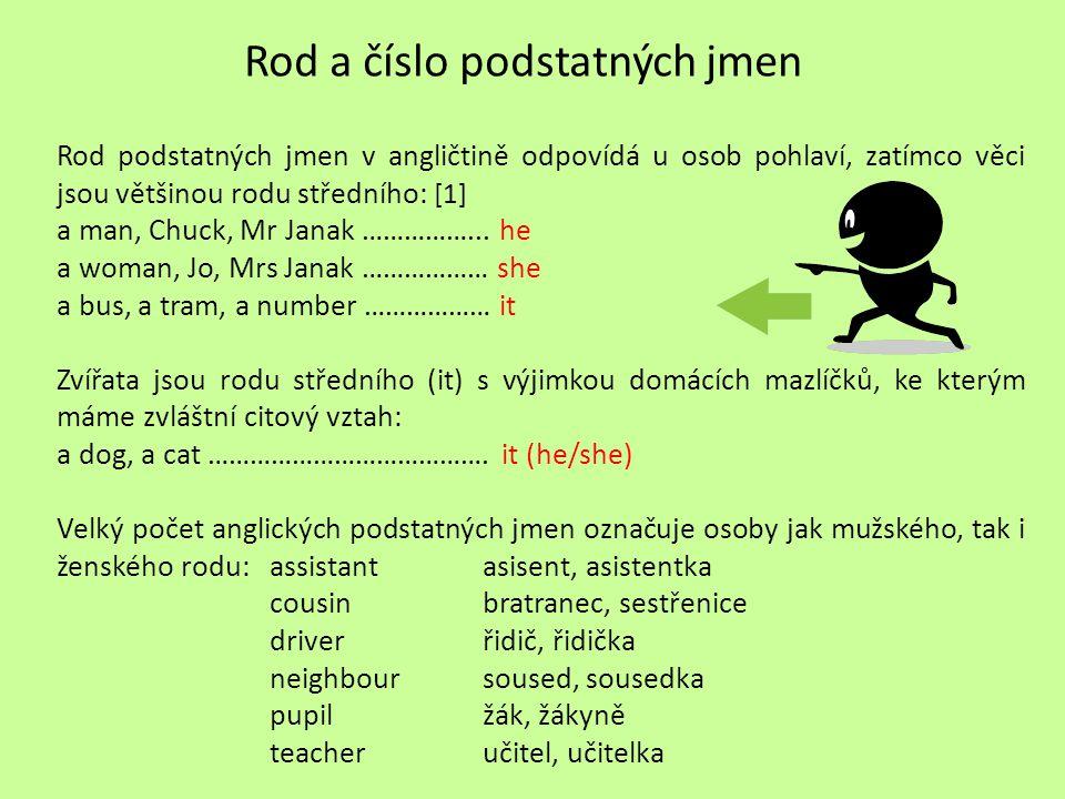Rod a číslo podstatných jmen Rod podstatných jmen v angličtině odpovídá u osob pohlaví, zatímco věci jsou většinou rodu středního: [1] a man, Chuck, M