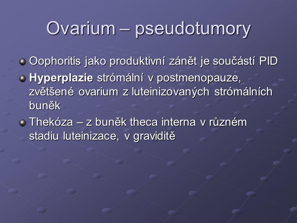 Ovarium – pseudotumory Oophoritis jako produktivní zánět je součástí PID Hyperplazie strómální v postmenopauze, zvětšené ovarium z luteinizovaných strómálních buněk Thekóza – z buněk theca interna v různém stadiu luteinizace, v graviditě