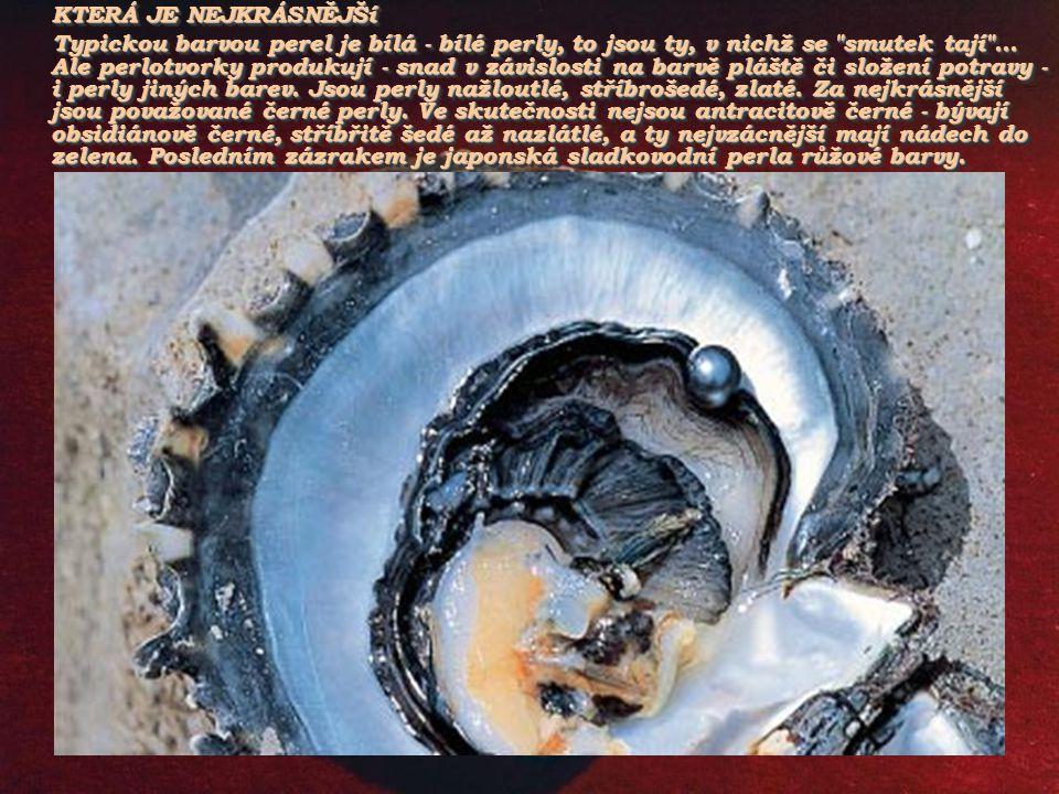 Vznik přírodní perly. Cizí tělísko se dostane mezi plášť a lasturu perlotvorky. Vnější epitelové buňky je obklíčí a začnou vylučovat konchyolin a arag
