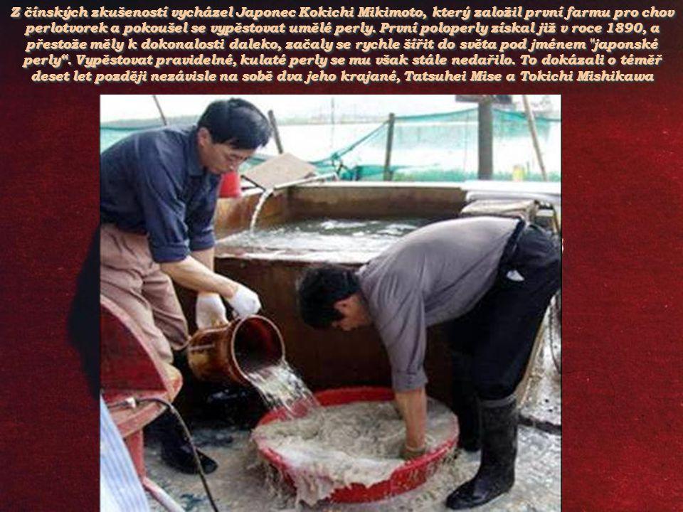 Do dutiny čínské perlorodky se vsune jen malinký, 1 mm široký a 2 mm dlouhý kousíček pláště z jiného mlže. Vložený kousek pláště začne produkovat perl