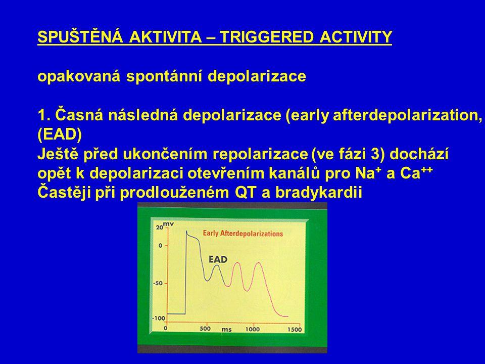 SPUŠTĚNÁ AKTIVITA – TRIGGERED ACTIVITY opakovaná spontánní depolarizace 1.
