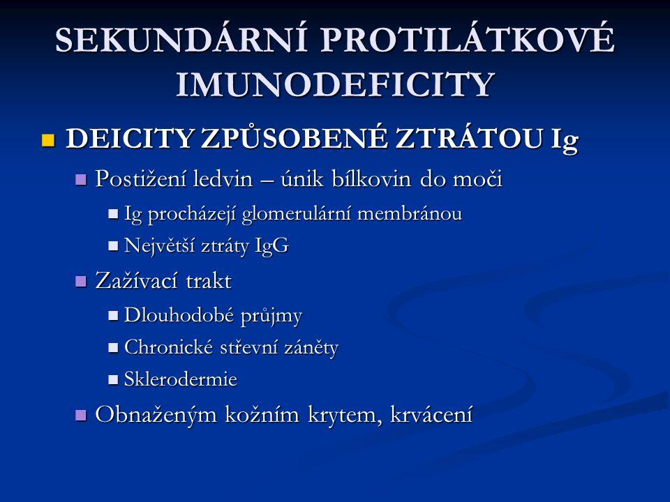 SEKUNDÁRNÍ PROTILÁTKOVÉ IMUNODEFICITY DEICITY ZPŮSOBENÉ ZTRÁTOU Ig DEICITY ZPŮSOBENÉ ZTRÁTOU Ig Postižení ledvin – únik bílkovin do moči Postižení led