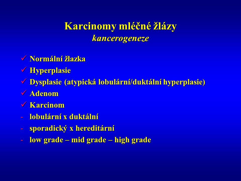 Karcinomy mléčné žlázy kancerogeneze Normální žlazka Normální žlazka Hyperplasie Hyperplasie Dysplasie (atypická lobulární/duktální hyperplasie) Dysplasie (atypická lobulární/duktální hyperplasie) Adenom Adenom Karcinom Karcinom -lobulární x duktální -sporadický x hereditární -low grade – mid grade – high grade