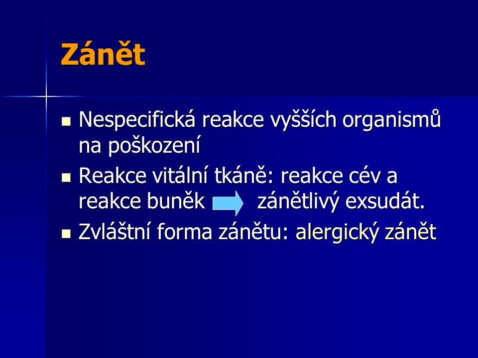 Chronický zánět-příčiny Persistující infekce např.