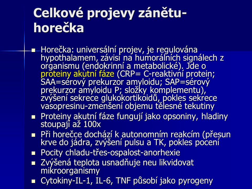 Celkové projevy zánětu- horečka Horečka: universální projev, je regulována hypothalamem, závisí na humorálních signálech z organismu (endokrinní a metabolické).