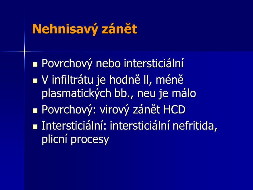 Nehnisavý zánět Povrchový nebo intersticiální Povrchový nebo intersticiální V infiltrátu je hodně ll, méně plasmatických bb., neu je málo V infiltrátu je hodně ll, méně plasmatických bb., neu je málo Povrchový: virový zánět HCD Povrchový: virový zánět HCD Intersticiální: intersticiální nefritida, plicní procesy Intersticiální: intersticiální nefritida, plicní procesy