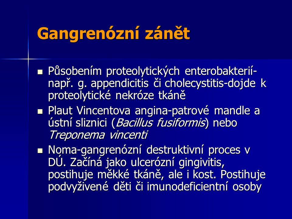 Gangrenózní zánět Působením proteolytických enterobakterií- např.