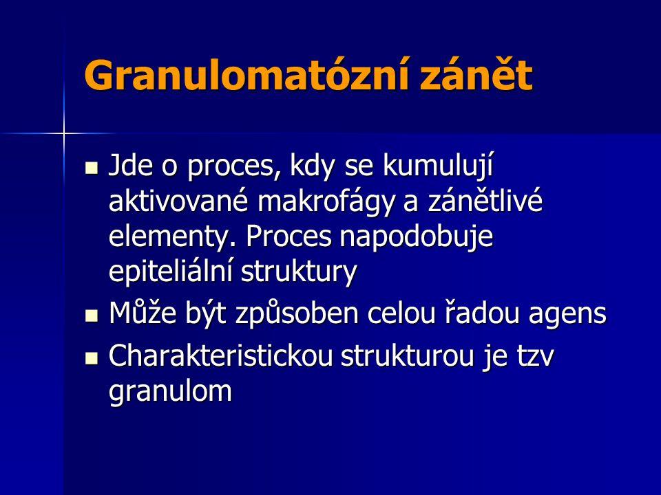 Granulomatózní zánět Jde o proces, kdy se kumulují aktivované makrofágy a zánětlivé elementy.