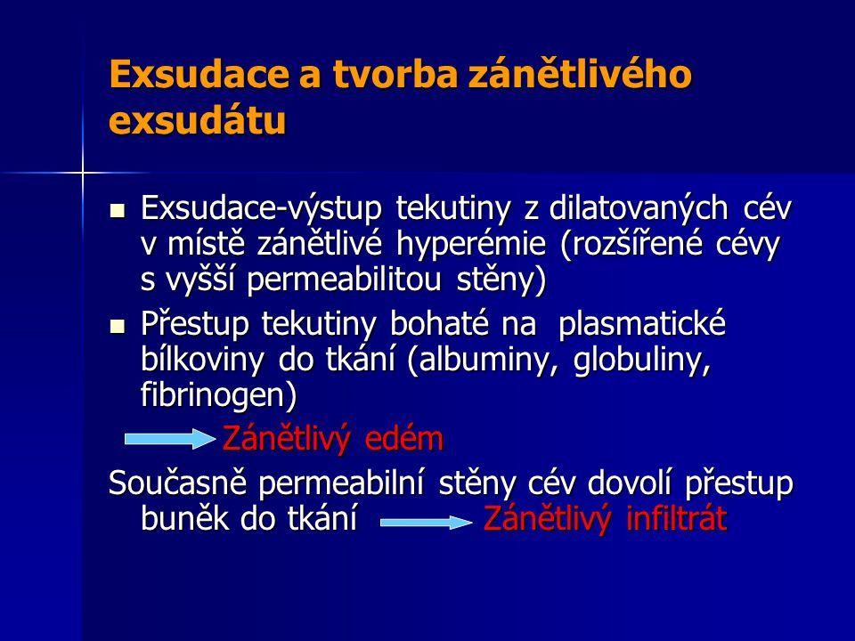 Exsudace a tvorba zánětlivého exsudátu Exsudace-výstup tekutiny z dilatovaných cév v místě zánětlivé hyperémie (rozšířené cévy s vyšší permeabilitou stěny) Exsudace-výstup tekutiny z dilatovaných cév v místě zánětlivé hyperémie (rozšířené cévy s vyšší permeabilitou stěny) Přestup tekutiny bohaté na plasmatické bílkoviny do tkání (albuminy, globuliny, fibrinogen) Přestup tekutiny bohaté na plasmatické bílkoviny do tkání (albuminy, globuliny, fibrinogen) Zánětlivý edém Zánětlivý edém Současně permeabilní stěny cév dovolí přestup buněk do tkání Zánětlivý infiltrát