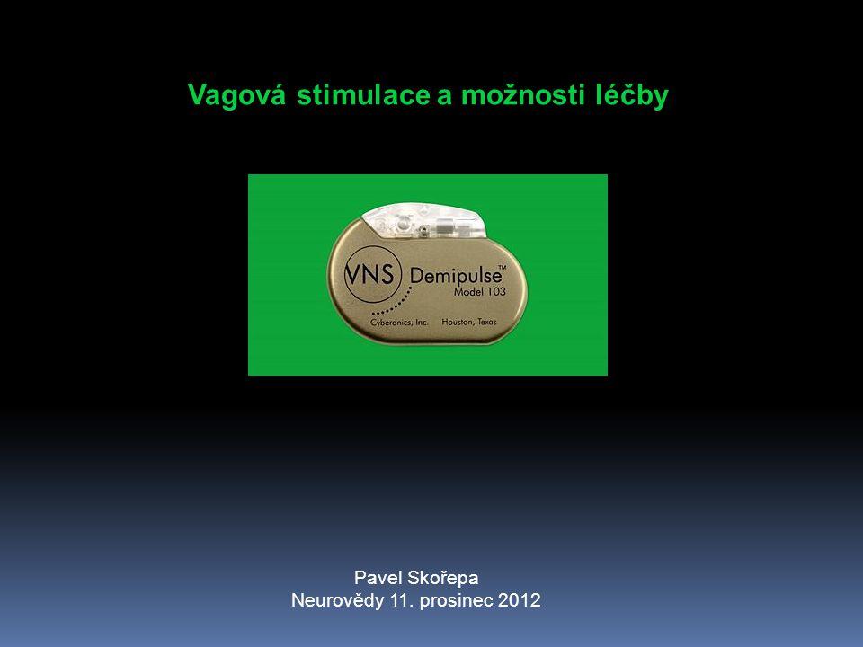 Vagová stimulace a možnosti léčby Pavel Skořepa Neurovědy 11. prosinec 2012