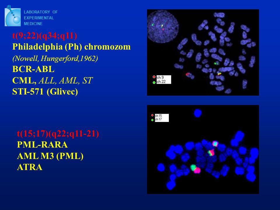LABORATORY OF EXPERIMENTAL MEDICINE t(9;22)(q34;q11) Philadelphia (Ph) chromozom (Nowell, Hungerford,1962) BCR-ABL CML, ALL, AML, ST STI-571 (Glivec) t(15;17)(q22;q11-21) PML-RARA AML M3 (PML) ATRA