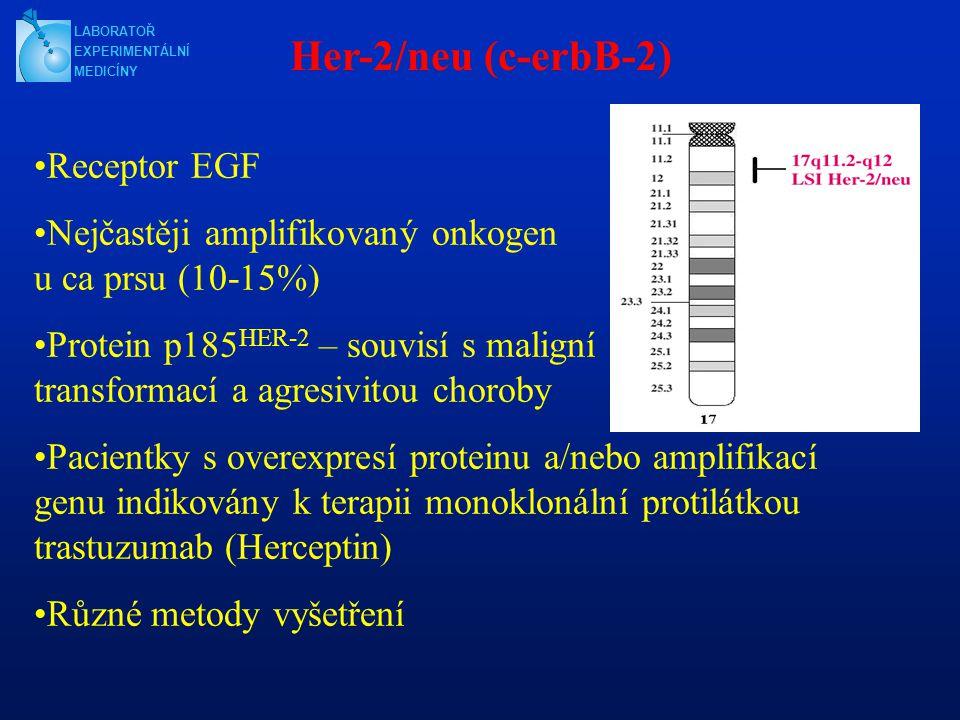 Her-2/neu (c-erbB-2) Receptor EGF Nejčastěji amplifikovaný onkogen u ca prsu (10-15%) Protein p185 HER-2 – souvisí s maligní transformací a agresivitou choroby Pacientky s overexpresí proteinu a/nebo amplifikací genu indikovány k terapii monoklonální protilátkou trastuzumab (Herceptin) Různé metody vyšetření LABORATOŘ EXPERIMENTÁLNÍ MEDICÍNY