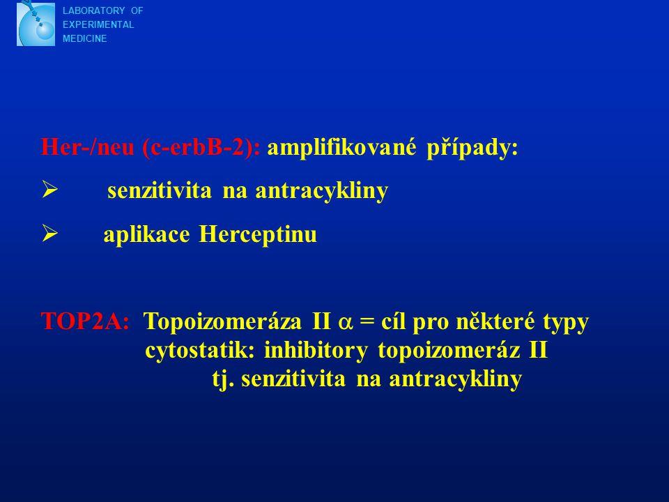 LABORATORY OF EXPERIMENTAL MEDICINE Her-/neu (c-erbB-2): amplifikované případy:  senzitivita na antracykliny  aplikace Herceptinu TOP2A: Topoizomeráza II  = cíl pro některé typy cytostatik: inhibitory topoizomeráz II tj.