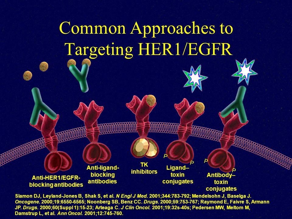 Common Approaches to Targeting HER1/EGFR Slamon DJ, Leyland-Jones B, Shak S, et al.