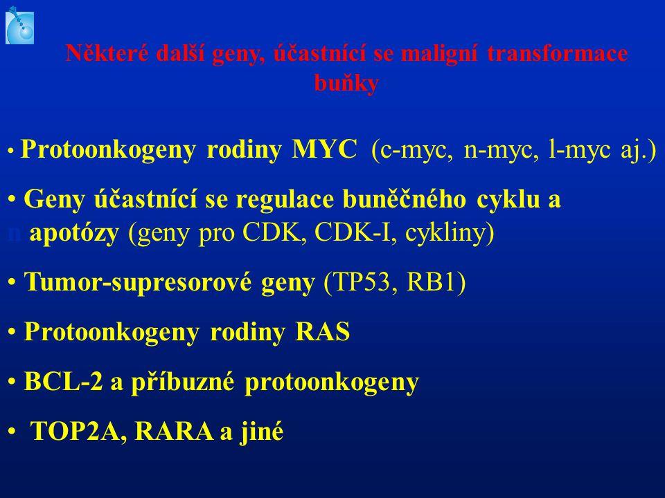Protoonkogeny rodiny MYC (c-myc, n-myc, l-myc aj.) Geny účastnící se regulace buněčného cyklu a n apotózy (geny pro CDK, CDK-I, cykliny) Tumor-supresorové geny (TP53, RB1) Protoonkogeny rodiny RAS BCL-2 a příbuzné protoonkogeny TOP2A, RARA a jiné Některé další geny, účastnící se maligní transformace buňky