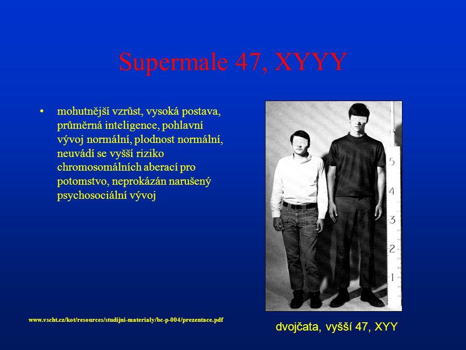 Supermale 47, XYYY mohutnější vzrůst, vysoká postava, průměrná inteligence, pohlavní vývoj normální, plodnost normální, neuvádí se vyšší riziko chromosomálních aberací pro potomstvo, neprokázán narušený psychosociální vývoj dvojčata, vyšší 47, XYY www.vscht.cz/kot/resources/studijni-materialy/bc-p-004/prezentace.pdf