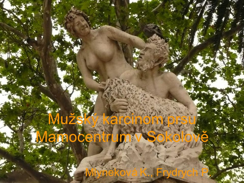 Mužský karcinom prsu Mamocentrum v Sokolově Mlyneková K., Frydrych P.