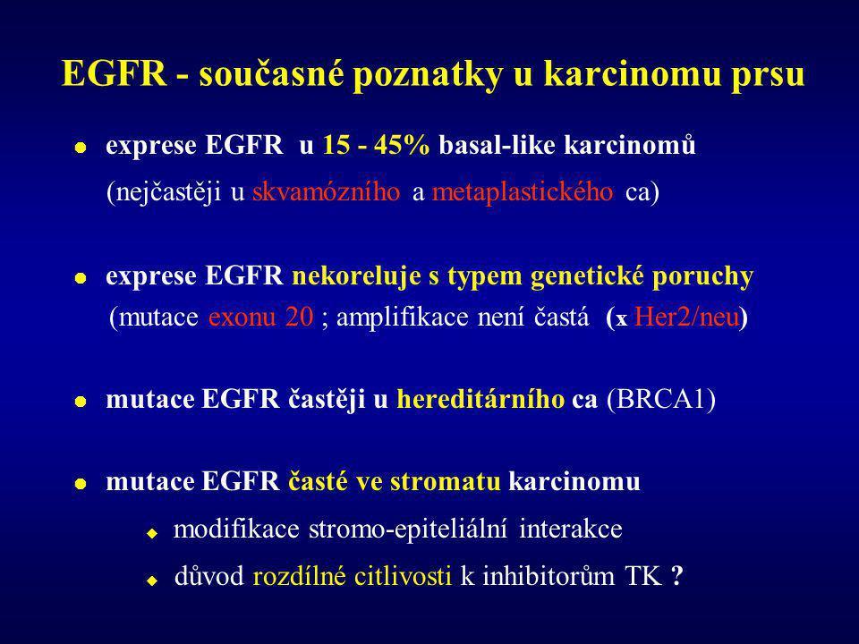 EGFR - současné poznatky u karcinomu prsu  exprese EGFR u 15 - 45% basal-like karcinomů (nejčastěji u skvamózního a metaplastického ca)  exprese EGFR nekoreluje s typem genetické poruchy (mutace exonu 20 ; amplifikace není častá ( x Her2/neu)  mutace EGFR častěji u hereditárního ca (BRCA1)  mutace EGFR časté ve stromatu karcinomu  modifikace stromo-epiteliální interakce  důvod rozdílné citlivosti k inhibitorům TK ?