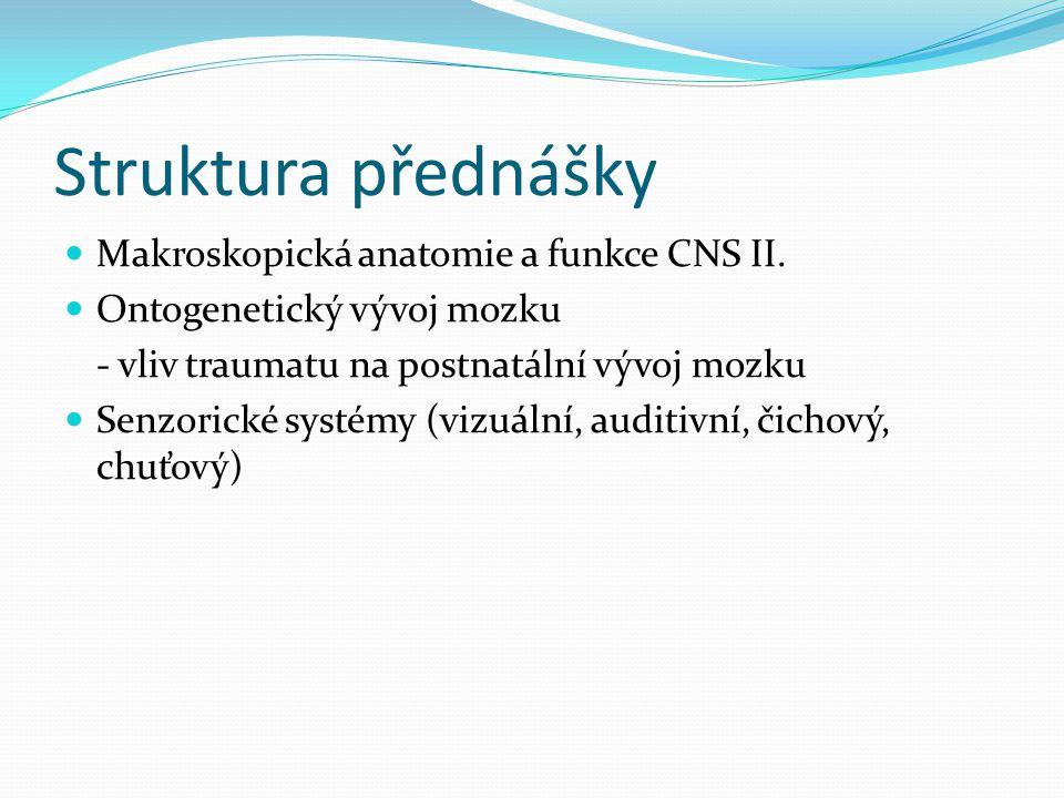 Struktura přednášky Makroskopická anatomie a funkce CNS II. Ontogenetický vývoj mozku - vliv traumatu na postnatální vývoj mozku Senzorické systémy (v
