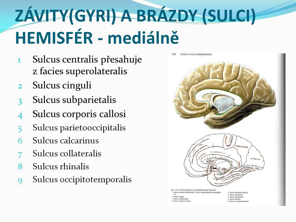 ZÁVITY(GYRI) A BRÁZDY (SULCI) HEMISFÉR - mediálně 1 Sulcus centralis přesahuje z facies superolateralis 2 Sulcus cinguli 3 Sulcus subparietalis 4 Sulc