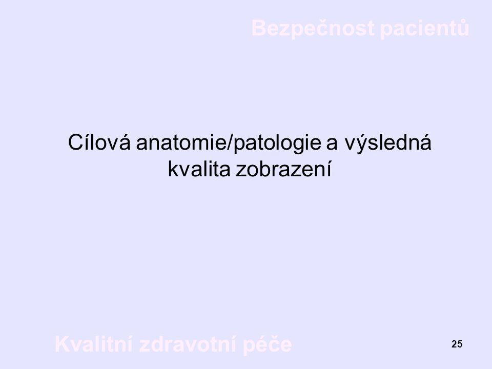 Bezpečnost pacientů Kvalitní zdravotní péče 25 Cílová anatomie/patologie a výsledná kvalita zobrazení