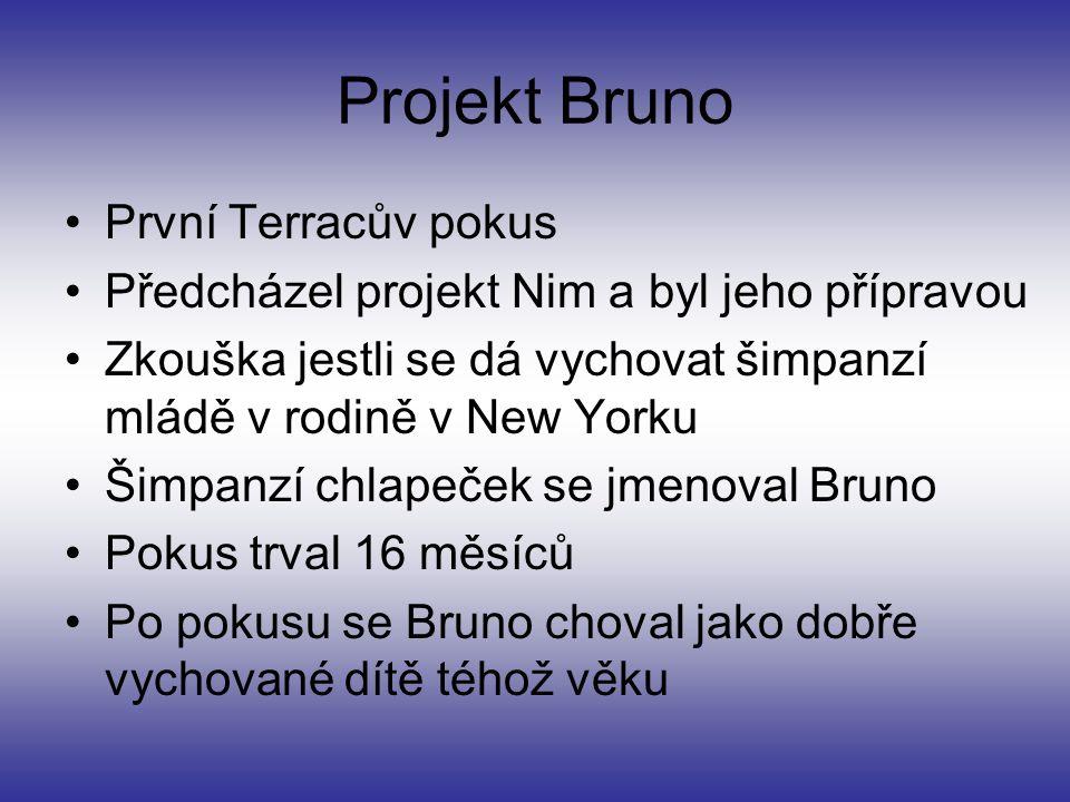 Projekt Bruno První Terracův pokus Předcházel projekt Nim a byl jeho přípravou Zkouška jestli se dá vychovat šimpanzí mládě v rodině v New Yorku Šimpa