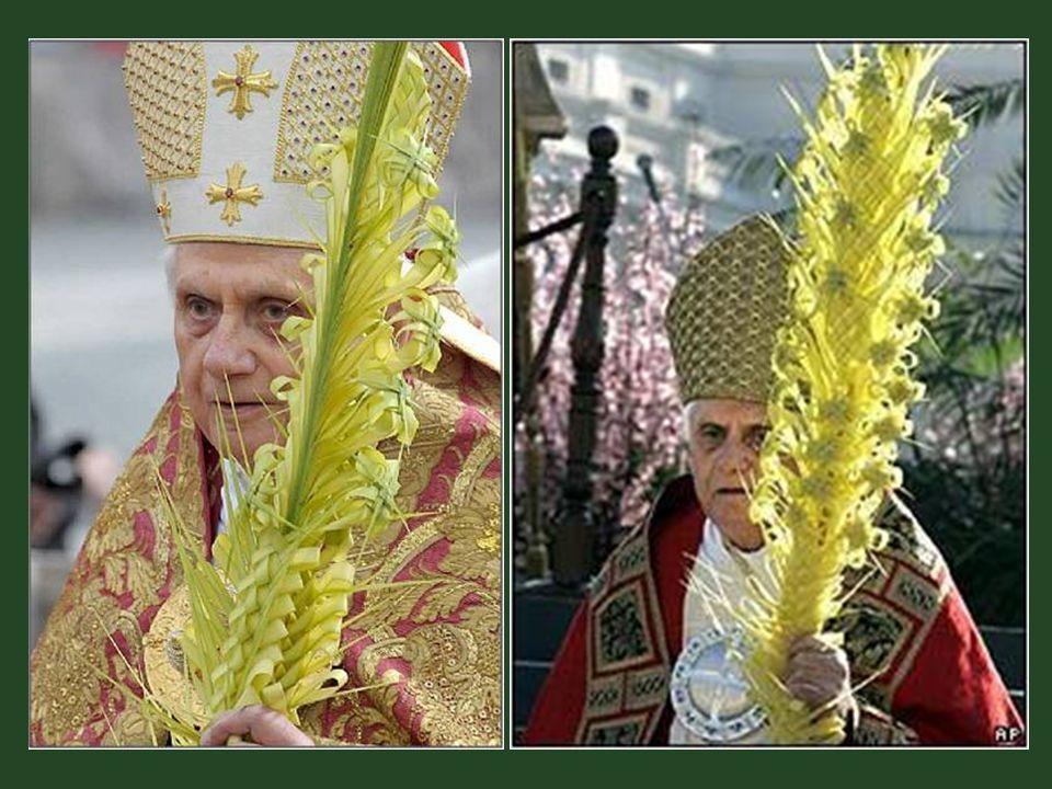 Od té doby po více než 420 let, mají jeho potomci i nadále tuto papežskou výsadu : být jedinými dodavateli palmových ratolestí.