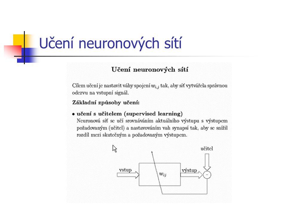 Učení neuronových sítí