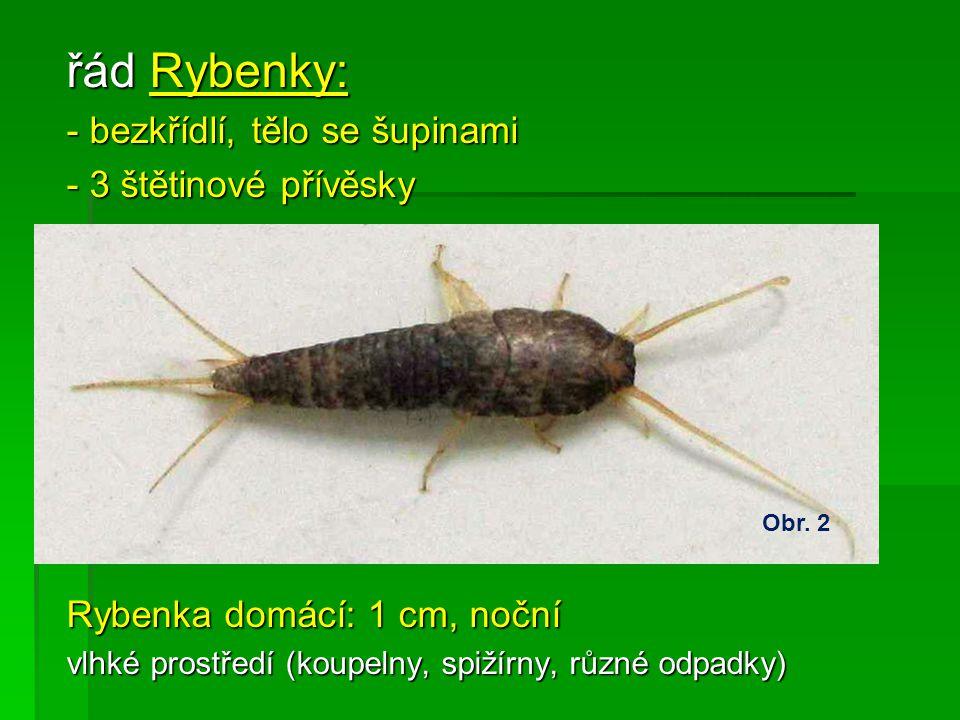 Zdroje obrázků:  Obr.12 MATEJKA, Radek.dragonflies-radekmatejka.cz [online].