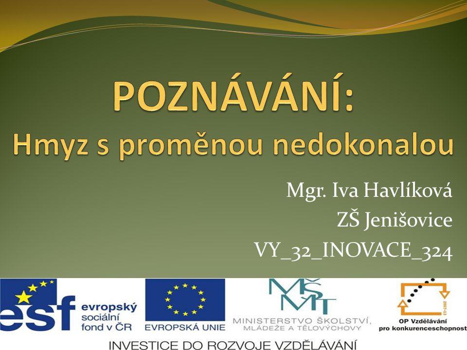 Mgr. Iva Havlíková ZŠ Jenišovice VY_32_INOVACE_324