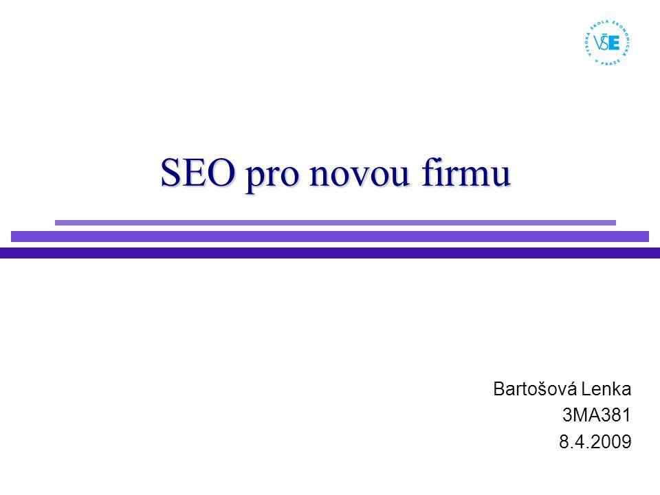 SEO pro novou firmu Bartošová Lenka 3MA381 8.4.2009