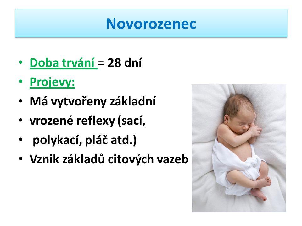 Novorozenec Doba trvání = 28 dní Projevy: Má vytvořeny základní vrozené reflexy (sací, polykací, pláč atd.) Vznik základů citových vazeb