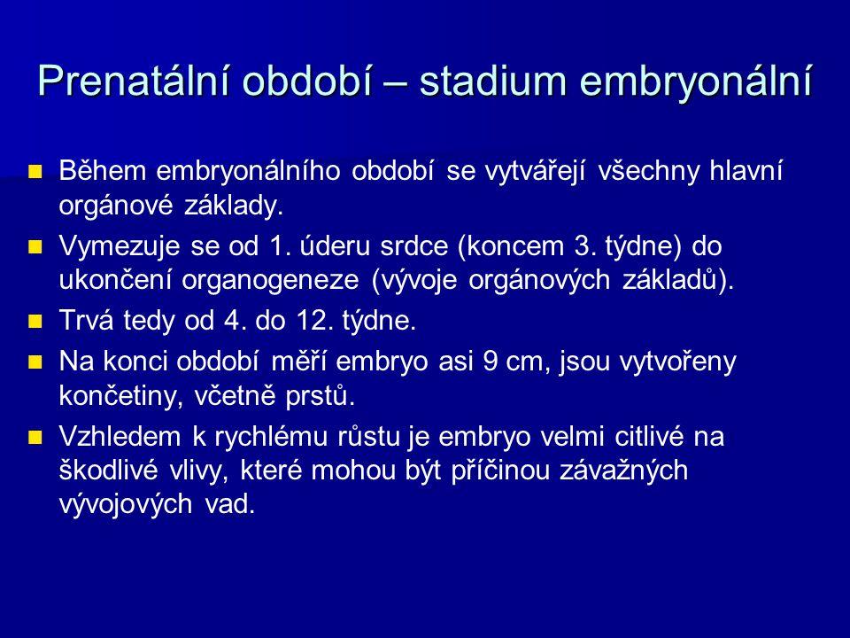 Prenatální období – stadium embryonální Během embryonálního období se vytvářejí všechny hlavní orgánové základy. Vymezuje se od 1. úderu srdce (koncem