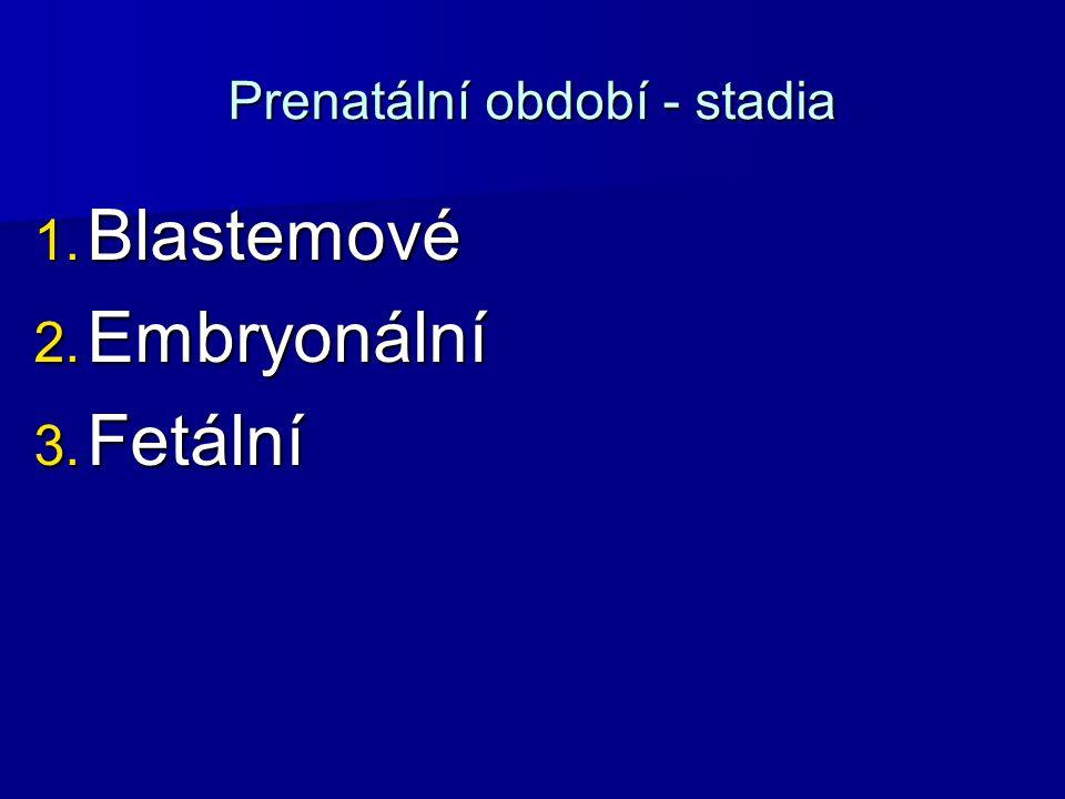 Prenatální období - stadia 1. Blastemové 2. Embryonální 3. Fetální