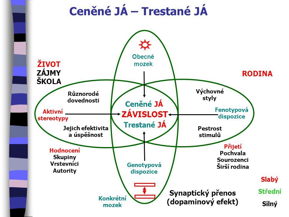 Ceněné JÁ – Trestané JÁ Obecně mozek Genotypová dispozice Fenotypová dispozice Aktivní stereotypy ZÁVISLOST Synaptický přenos (dopaminový efekt) Slabý