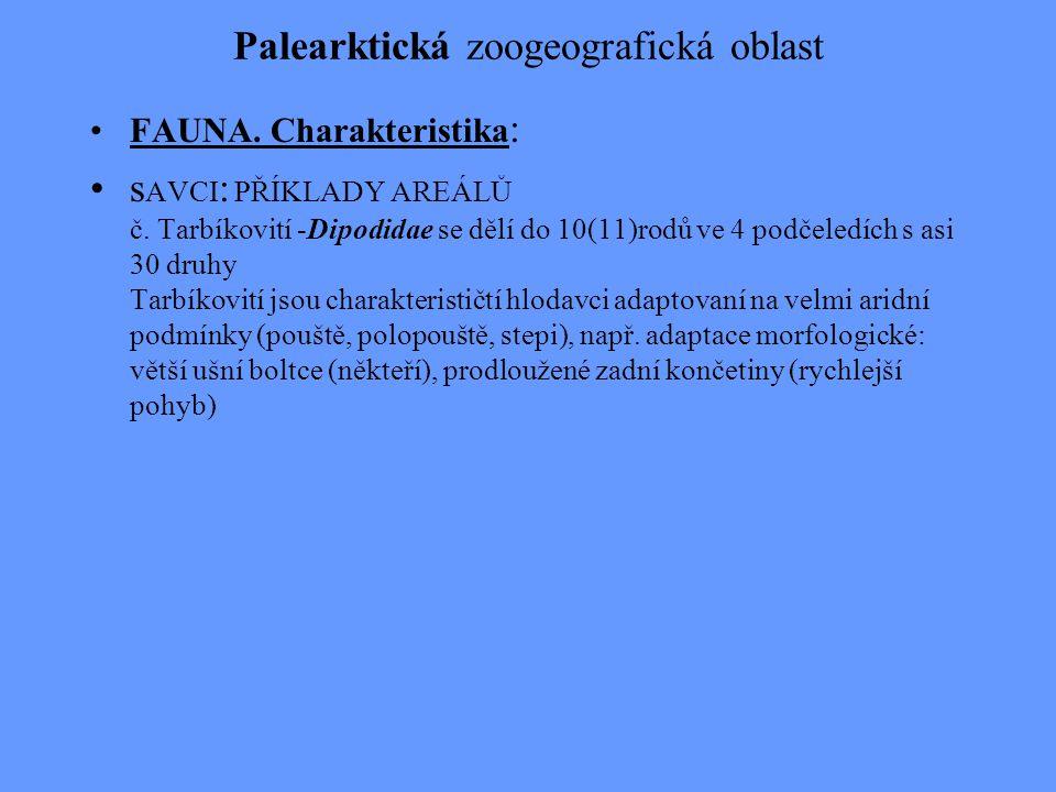 Palearktická zoogeografická oblast FAUNA. Charakteristika : s AVCI : PŘÍKLADY AREÁLŮ č. Tarbíkovití -Dipodidae se dělí do 10(11)rodů ve 4 podčeledích