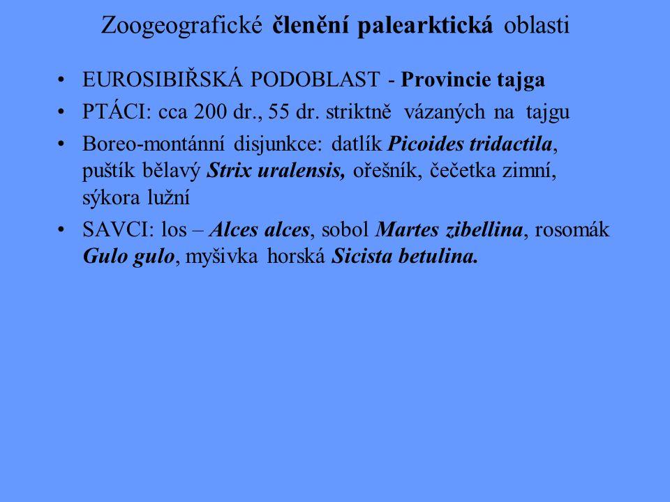 Zoogeografické členění palearktická oblasti EUROSIBIŘSKÁ PODOBLAST - Provincie tajga PTÁCI: cca 200 dr., 55 dr. striktně vázaných na tajgu Boreo-montá