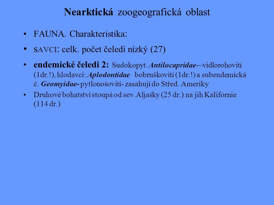 Nearktická zoogeografická oblast FAUNA. Charakteristika : s AVCI : celk. počet čeledí nízký (27) endemické čeledi 2: Sudokopyt. Antilocapridae-–vidlor