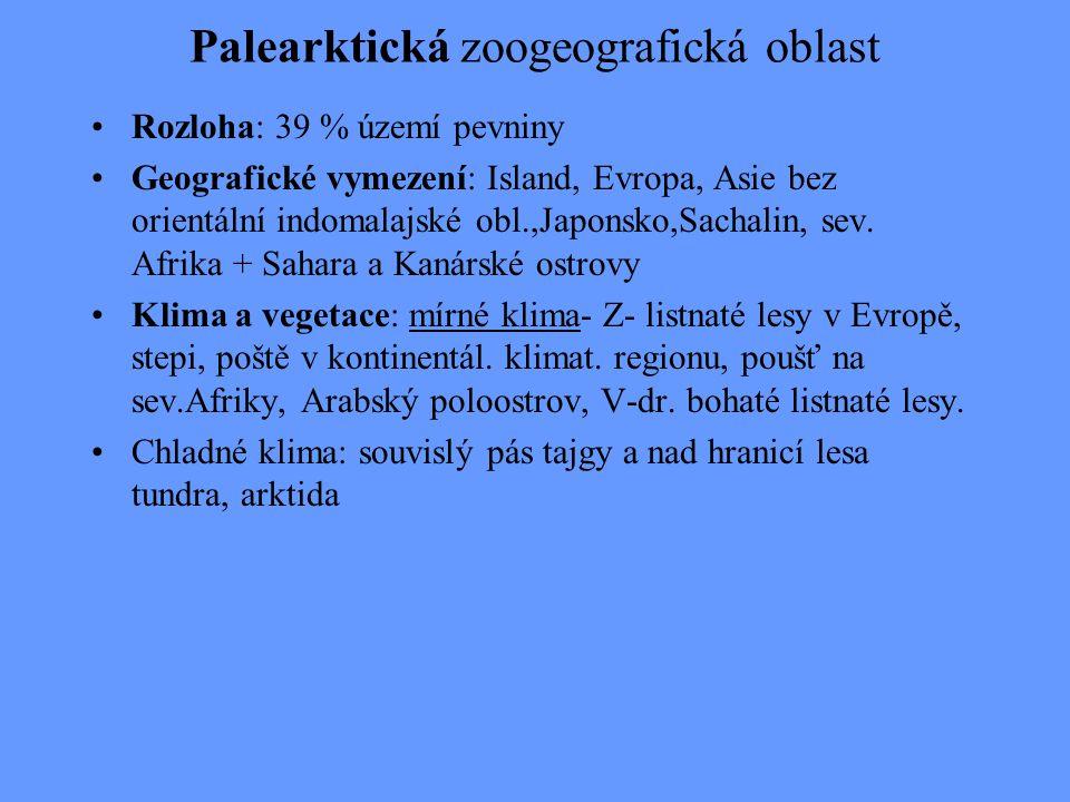 Palearktická zoogeografická oblast Rozloha: 39 % území pevniny Geografické vymezení: Island, Evropa, Asie bez orientální indomalajské obl.,Japonsko,Sa
