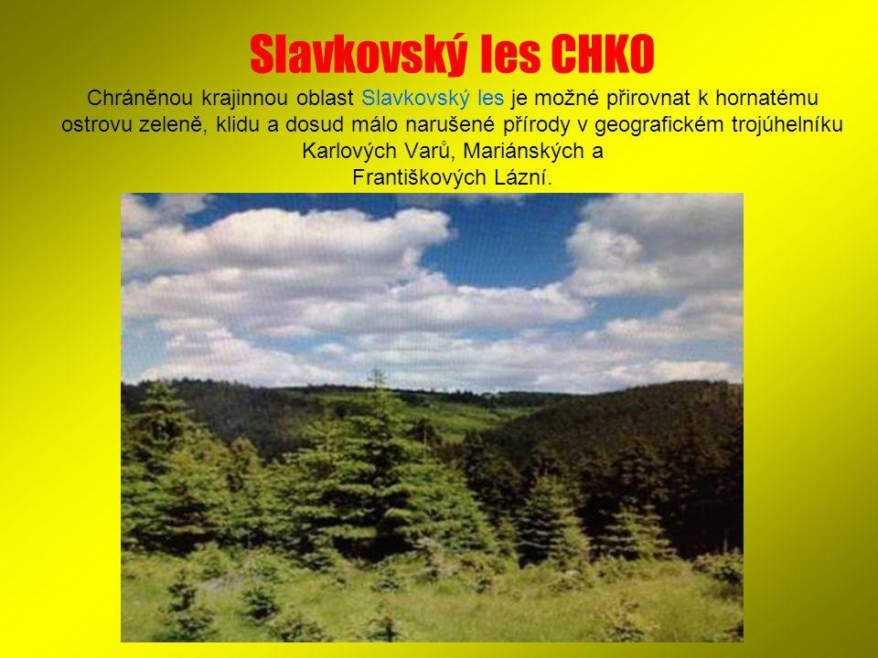Slavkovský les CHKO Chráněnou krajinnou oblast Slavkovský les je možné přirovnat k hornatému ostrovu zeleně, klidu a dosud málo narušené přírody v geo