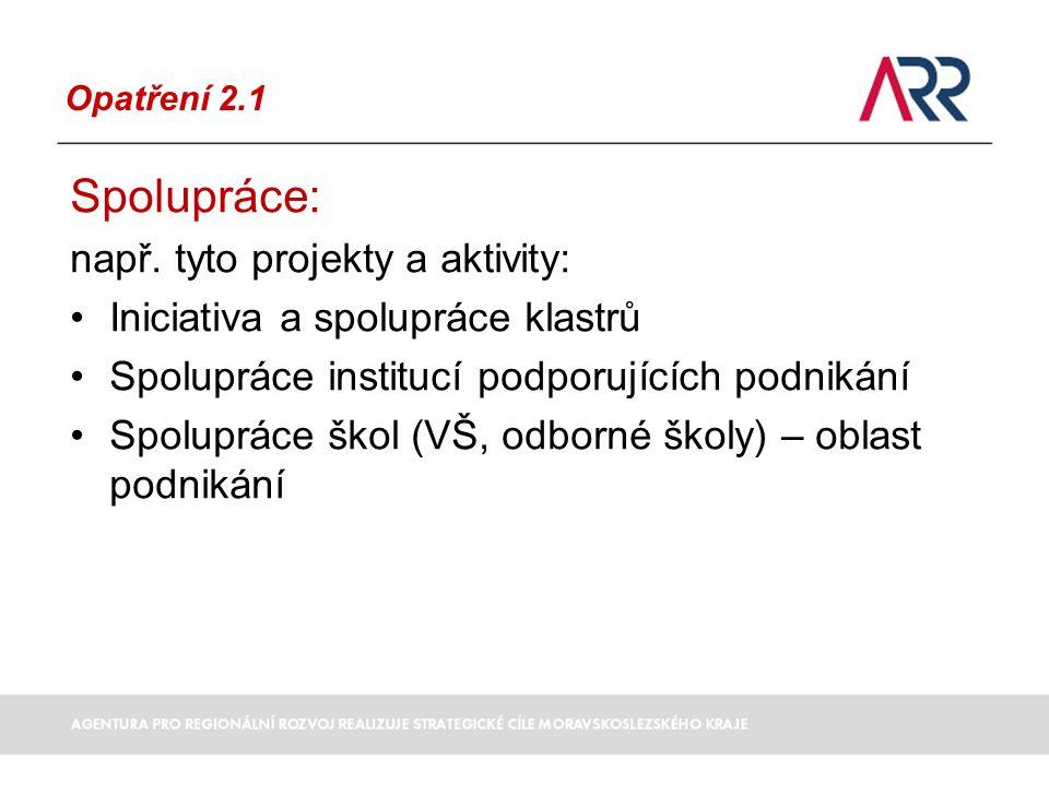 Opatření 2.1 Spolupráce: např.