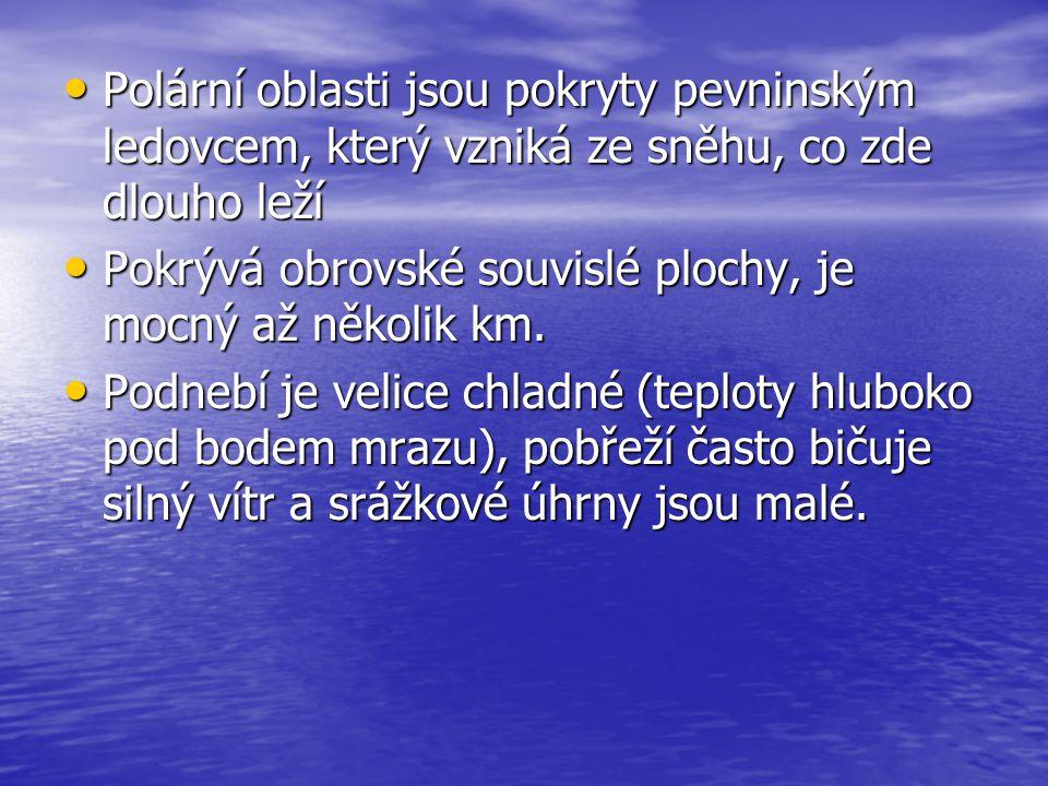 Doplň pojmy a zakroužkuj písmeno patřící do tajenky, kterou tvoří pojmenování typického zástupce polární fauny.