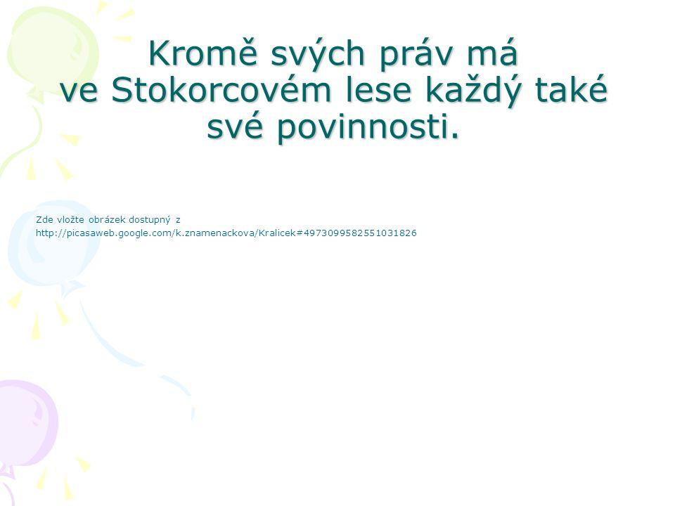Každý Stokorčan má právo na své jméno.