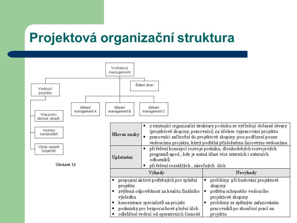 Projektová organizační struktura Obrázek 12