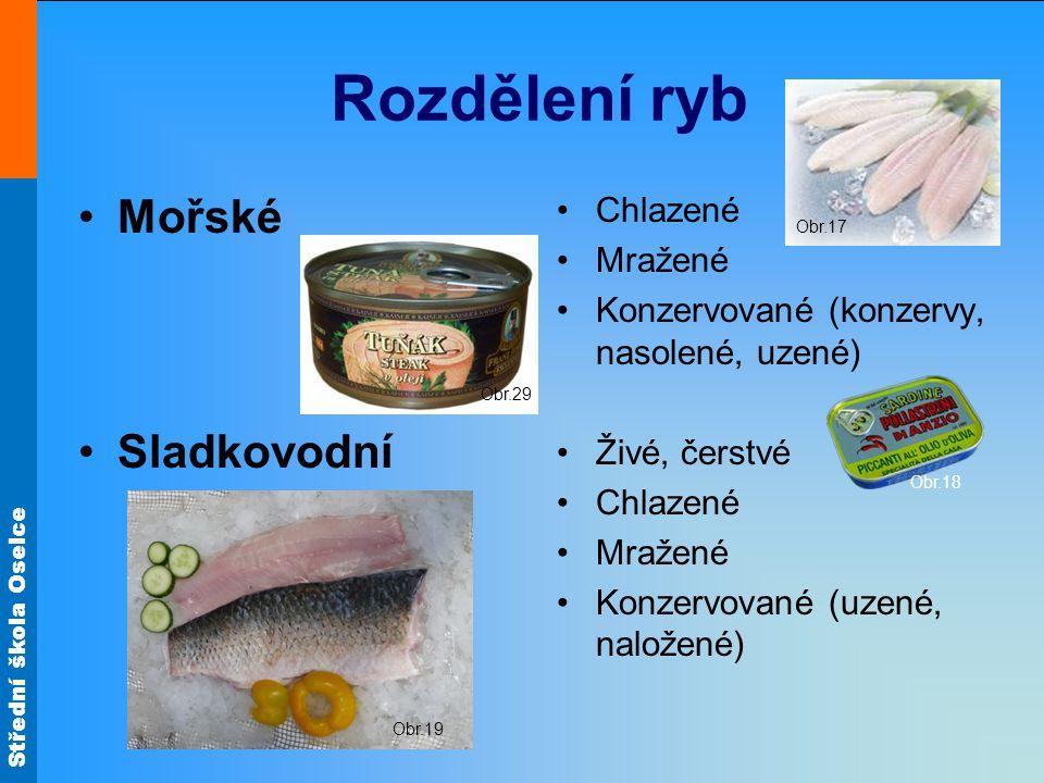 Střední škola Oselce Rozdělení sladkovodních ryb Dravé I.