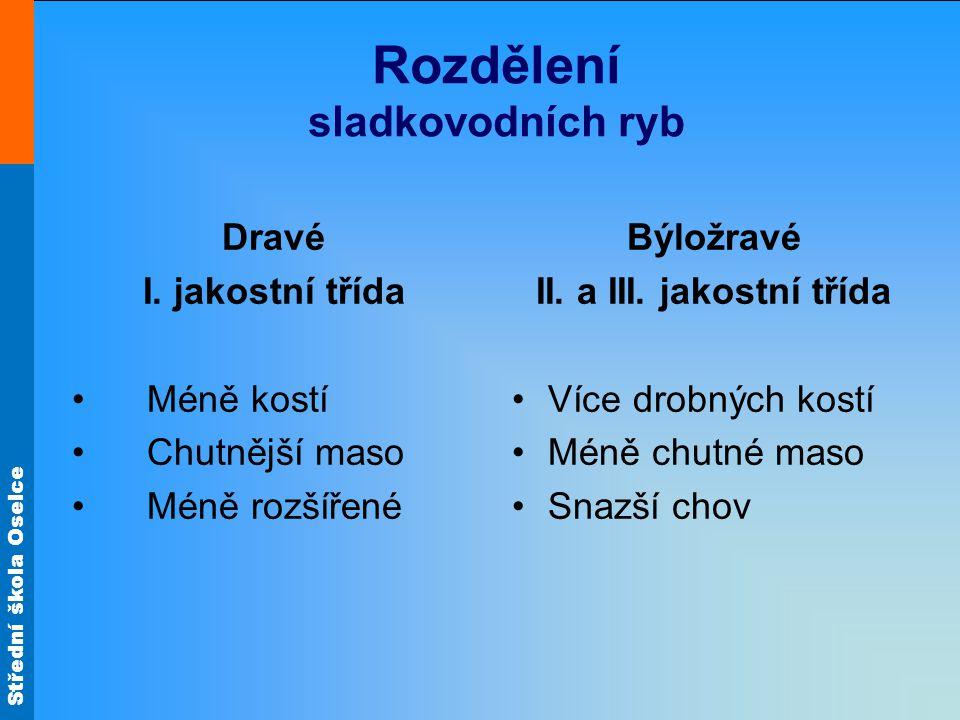 Střední škola Oselce Kapr namodro Zpět Popiš přípravu! Obr.31