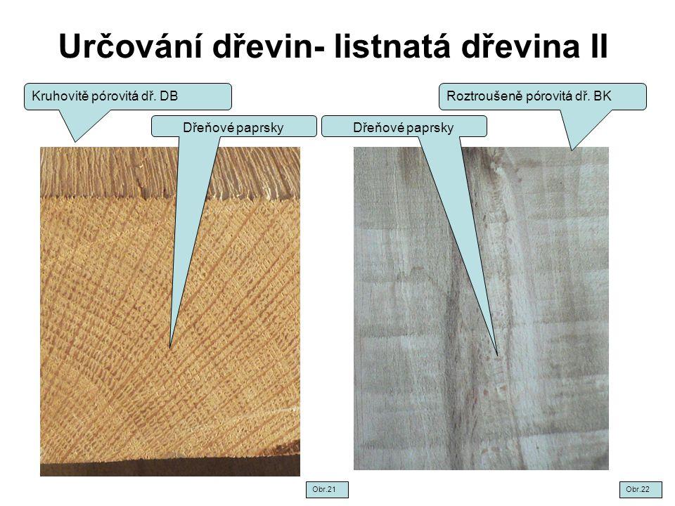 Určování dřevin- listnatá dřevina II Kruhovitě pórovitá dř. DBRoztroušeně pórovitá dř. BK Dřeňové paprsky Obr.22Obr.21
