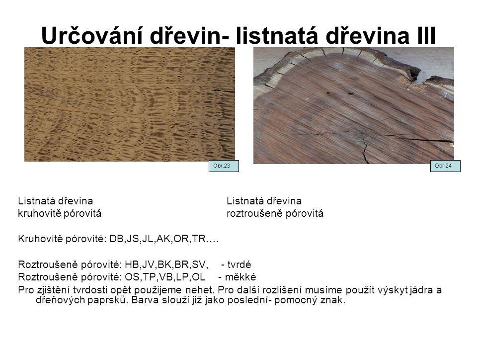 Určování dřevin- listnatá dřevina III Listnatá dřevina kruhovitě pórovitá roztroušeně pórovitá Kruhovitě pórovité: DB,JS,JL,AK,OR,TR…. Roztroušeně pór