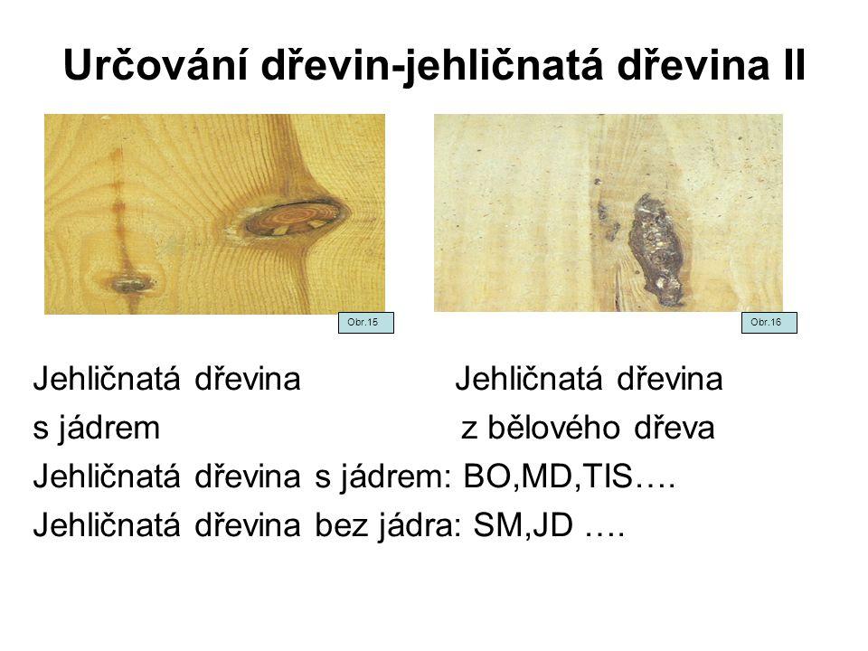 Určování dřevin-jehličnatá dřevina II Jehličnatá dřevina s jádrem z bělového dřeva Jehličnatá dřevina s jádrem: BO,MD,TIS…. Jehličnatá dřevina bez jád