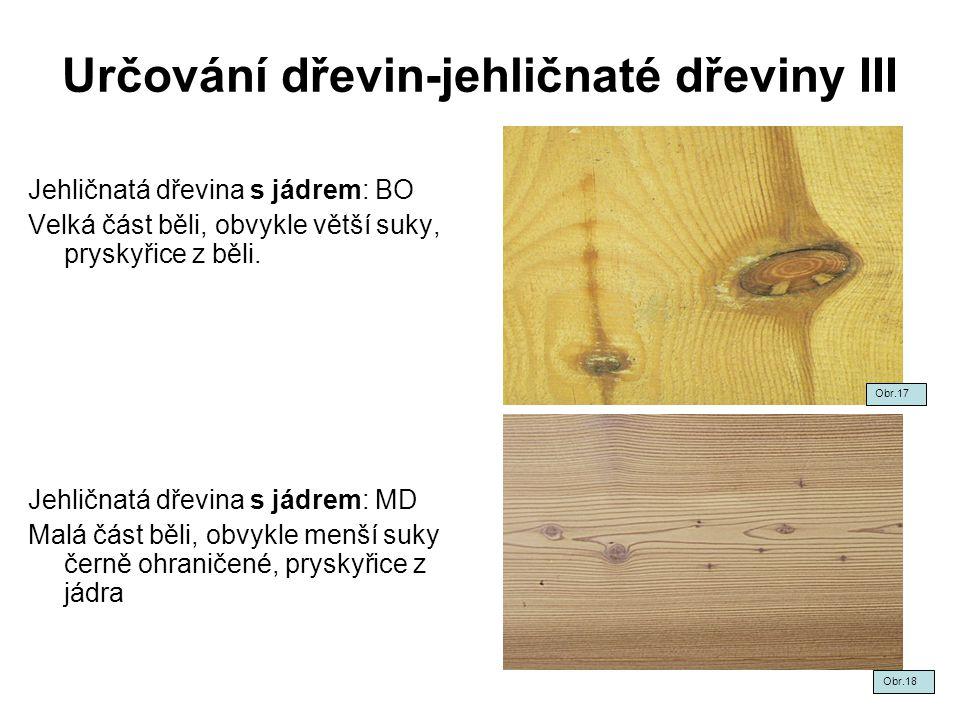 Určování dřevin-jehličnaté dřeviny III Jehličnatá dřevina s jádrem: BO Velká část běli, obvykle větší suky, pryskyřice z běli. Jehličnatá dřevina s já